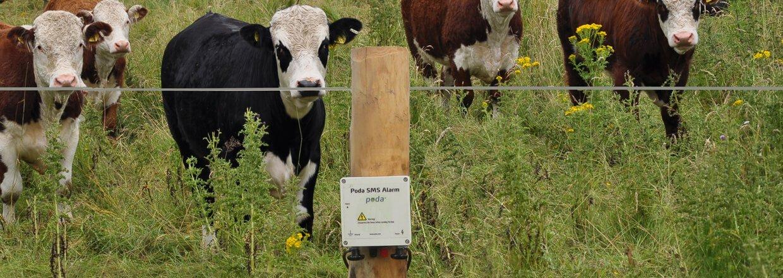 Poda SMS Alarm passer på dine dyr