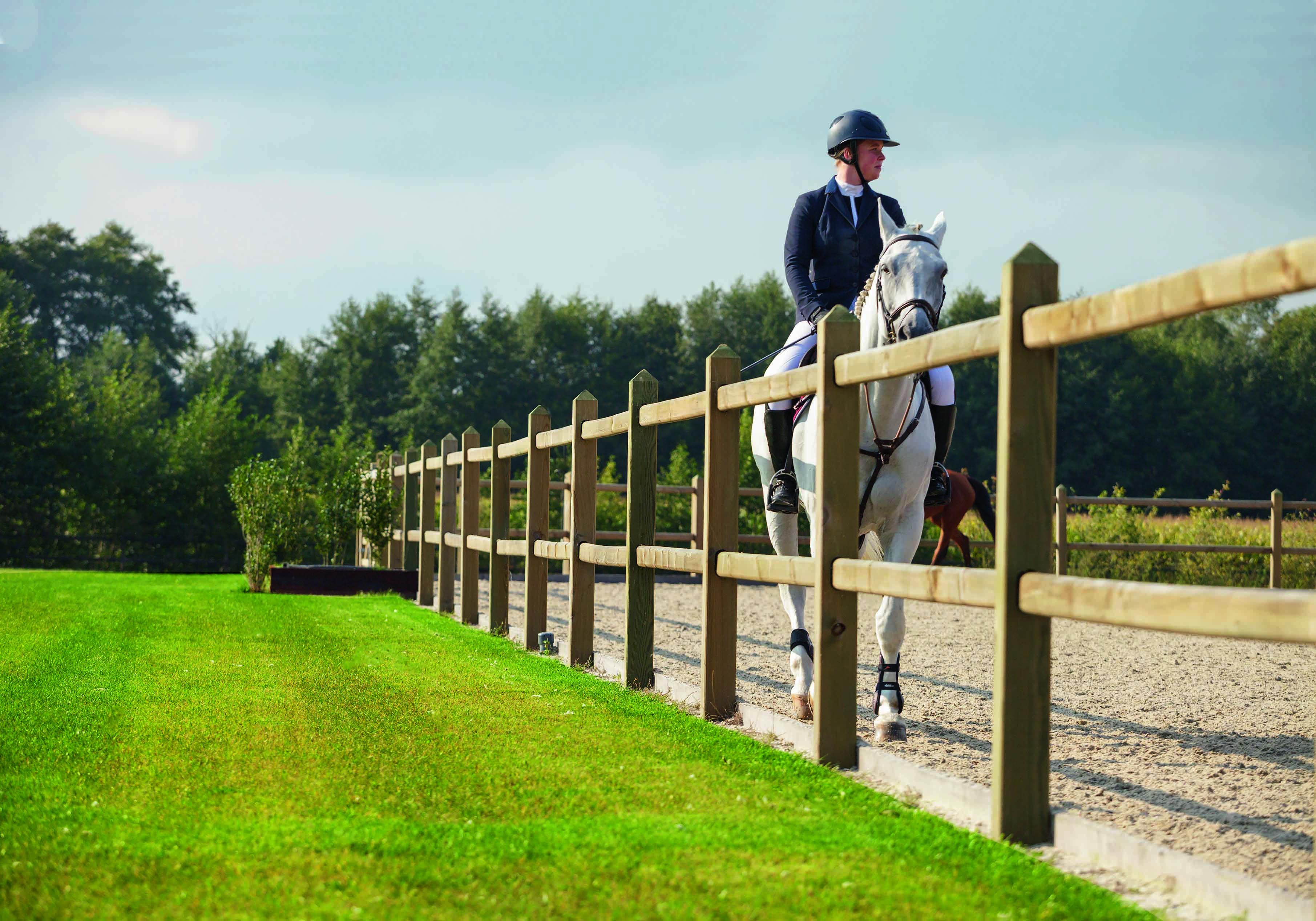 En pige står bag et hvidt lægtehegn sammen med hendes hest. Pigen står ansigt til ansigt med hesten, mens hun aer den | Poda Hegn