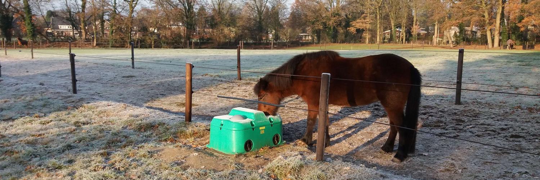 Ein braunes Pony trinkt aus einer Ganzjahres-Balltränke. Die Balltränke hat zwei Löcher, und wenn es unter einer Zaunlinie gestellt wird, kann die Tränke von zwei Koppeln genutzt werden | Poda Zaun