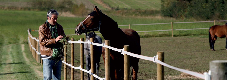 Ein Mann gibt einem Pferd auf der anderen Seite des Breitband-Elektrozauns eine Handvoll Gras | Poda Zaun