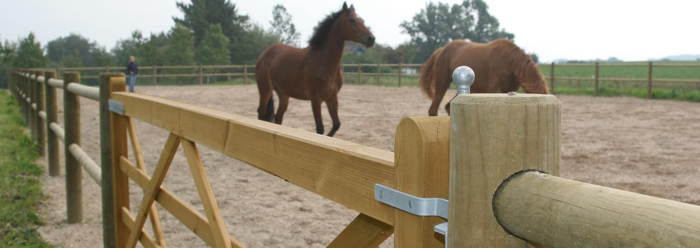 Zwei braune Pferde stehen in einer Paddock-Anlage. Ein Holztor gewährt Zugang zum Paddock | Poda Zaun