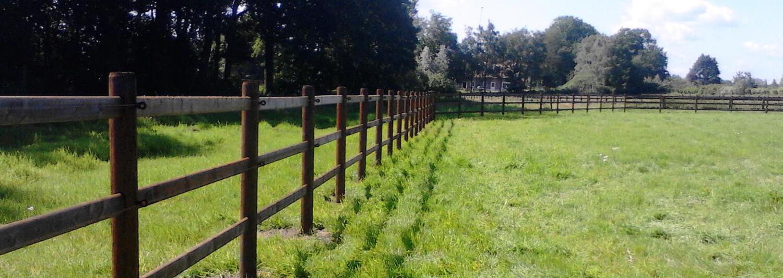 Ein Colorado Pferdezaun mit 3 Riegeln umgibt eine leere Koppel mit grünem Gras | Poda Zaun