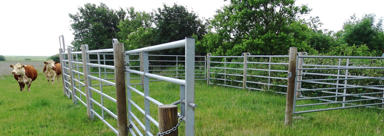 Fangefoldselementer, træpæle og stållåger udgør en perfekt, midlertidig indhegning til dit kvæg | Poda Hegn