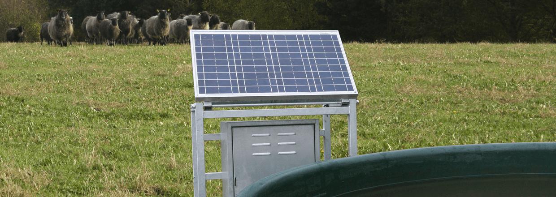 Et solcelle-panel udnytter solens energi til at forsyne en pumpe med elektricitet. Pumpen kan forsyne drikkekar o.l. med friskt vand | Poda Hegn