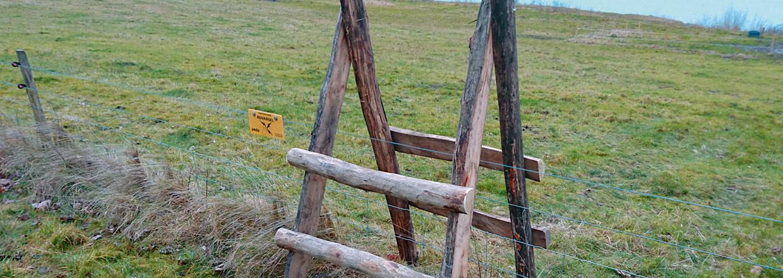 En stente udformet som en dobbelt stige tillader at folk til fods nemt og sikkert kan passere el-hegn | Poda Hegn