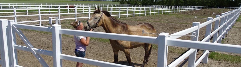 Gjerder til hester<br>