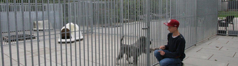 Hundegårde<br>