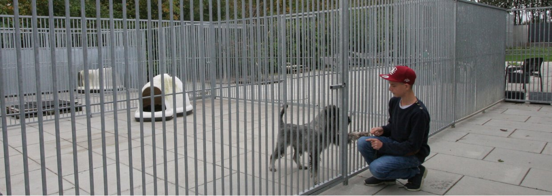 Hundegårder<br>