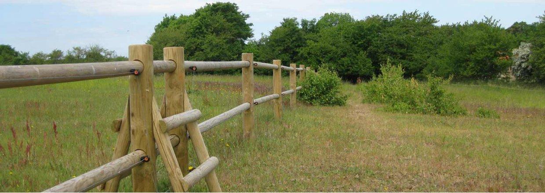Texas hestefold<br>