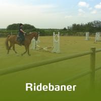 En kvindelig rytter fører hendes hest rundt på en ridebane. Ridebanen er afgrænset af et lægtehegn i fyrretræ.
