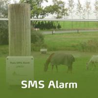 En sms alarm er monteret på en hegnspæl. To heste går og græsser bag elhegnet.