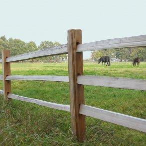 Farmland hestehegn